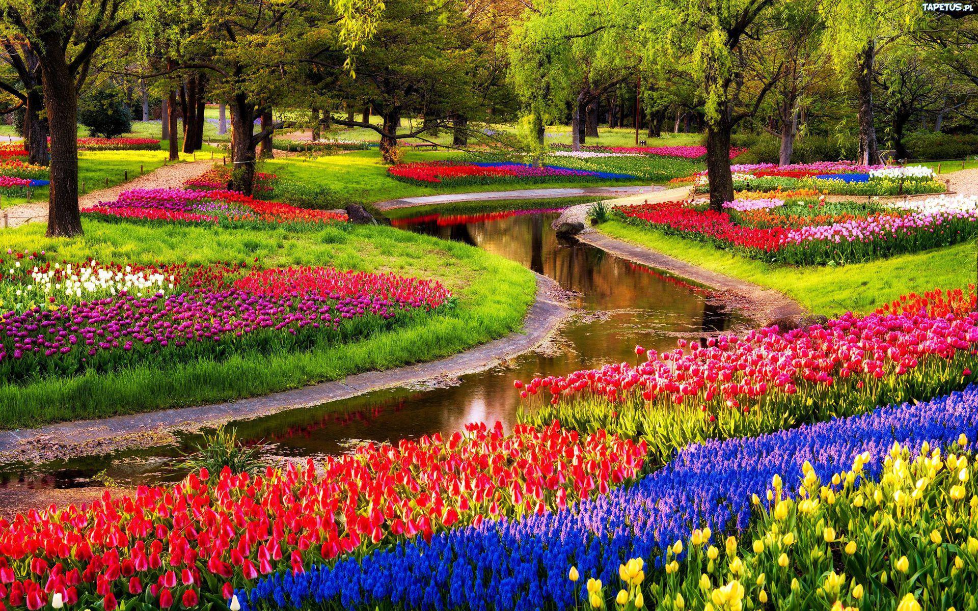 Resultado de imagen para Jardines De Keukenhof.
